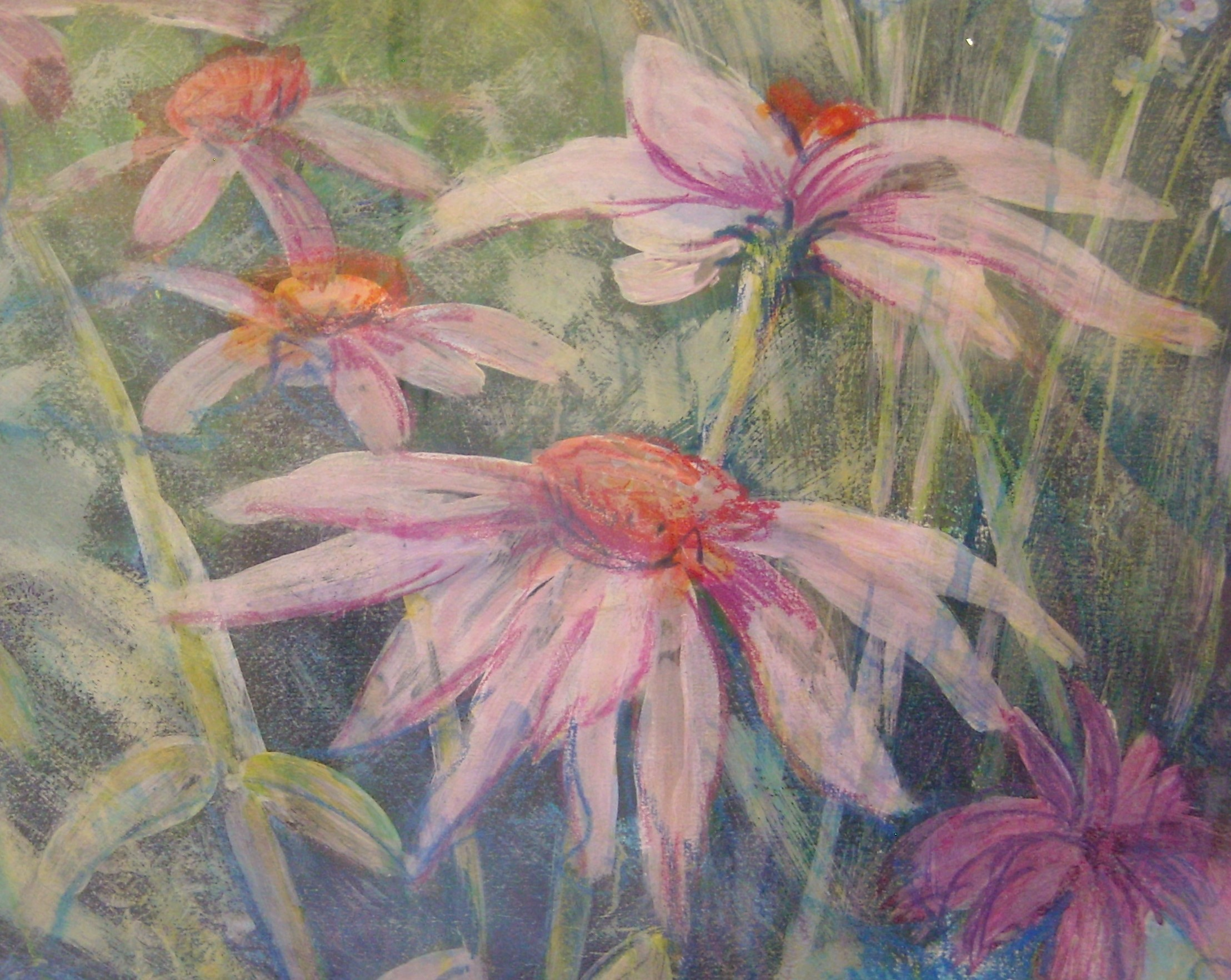 Drawing From Nature A Course For Beginners With Imogen